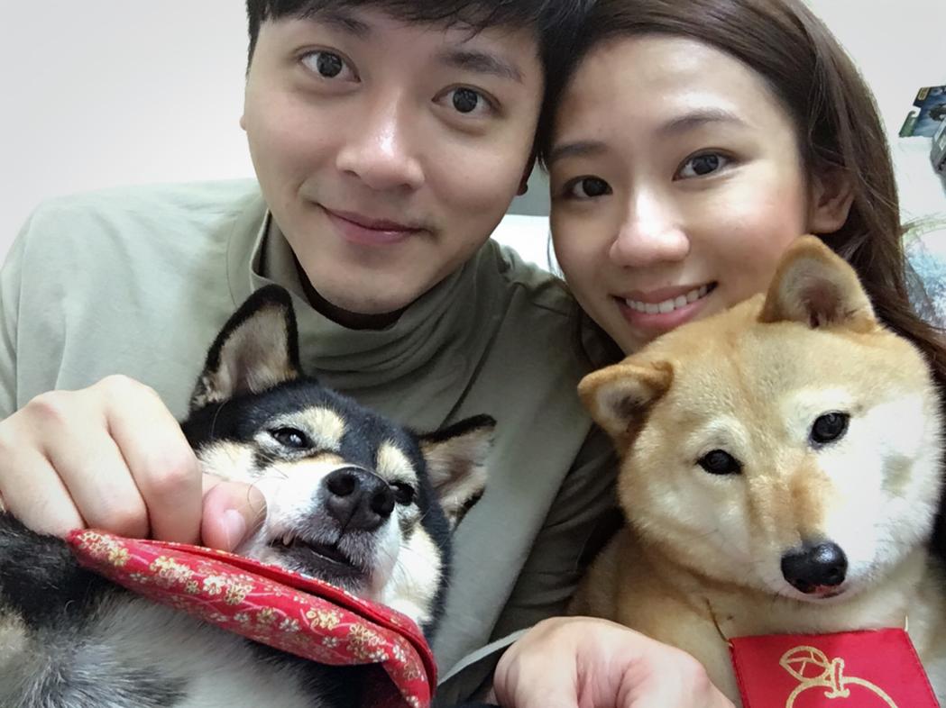 馬俊麟和老婆梁敏婷結婚時領養2柴犬,開心宣布老婆懷雙胞胎。圖/民視提供