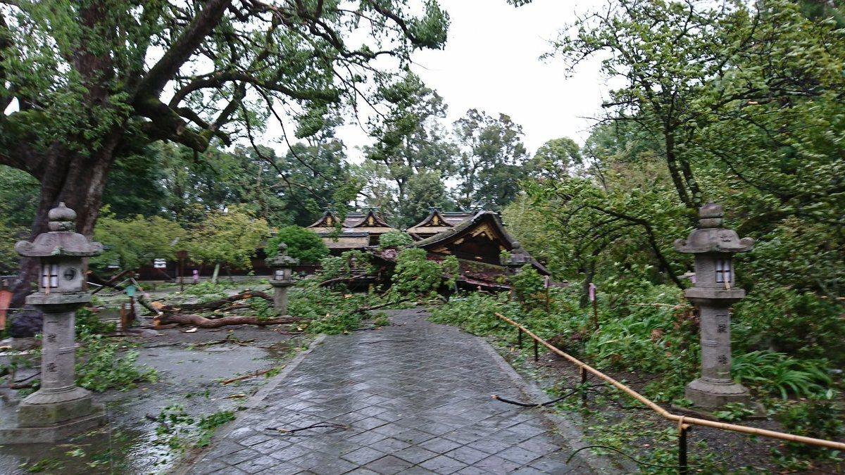 照片為平野神社受損狀況。圖/平野神社推特