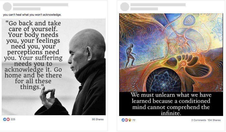 紐約時報整理有關自我照護的相關貼文,讓讀者判斷何者為影響選舉的活動。取自臉書、紐...