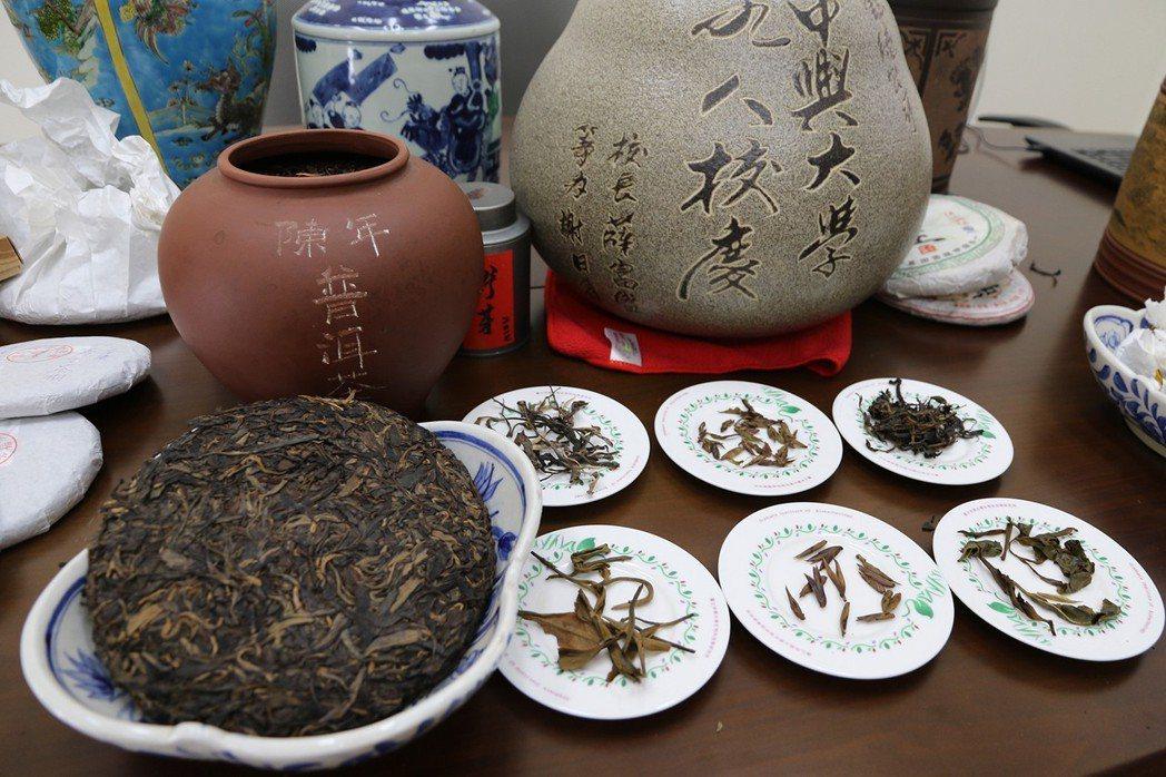 興大研究團隊歷時10年研究,證實普洱茶中的主要多酚成分之一,水解型鞣酸單寧「st...