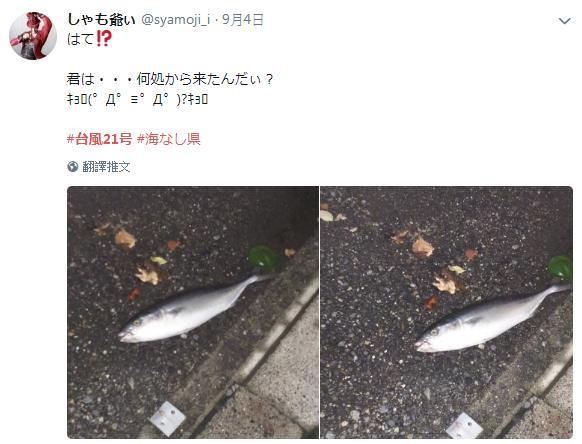圖片來源/twitter@syamoji_i