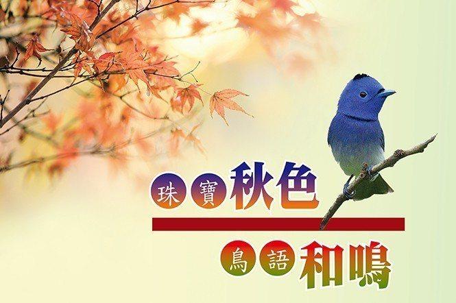 黑枕藍鶲─台灣特有品種。普遍分布於低山區或丘陵地帶,性活潑好動,飛翔快速卻不遠飛...