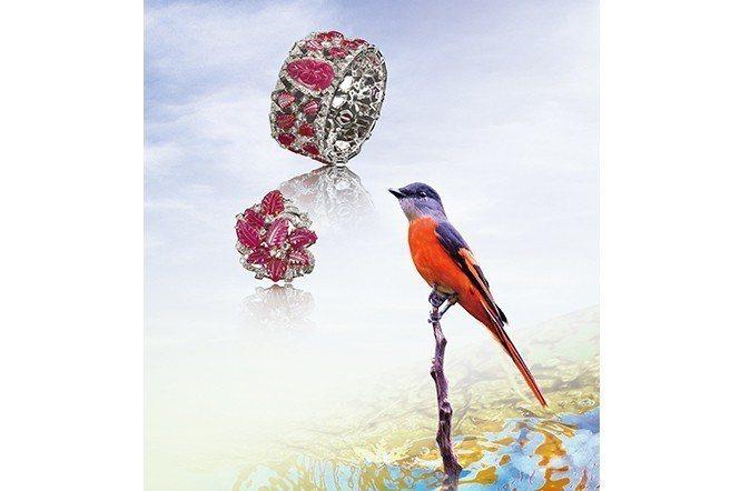 灰喉山椒鳥─台灣低海拔山區普遍留鳥,身長約18公分,修長身型,雄鳥橘紅色,雌鳥鮮...