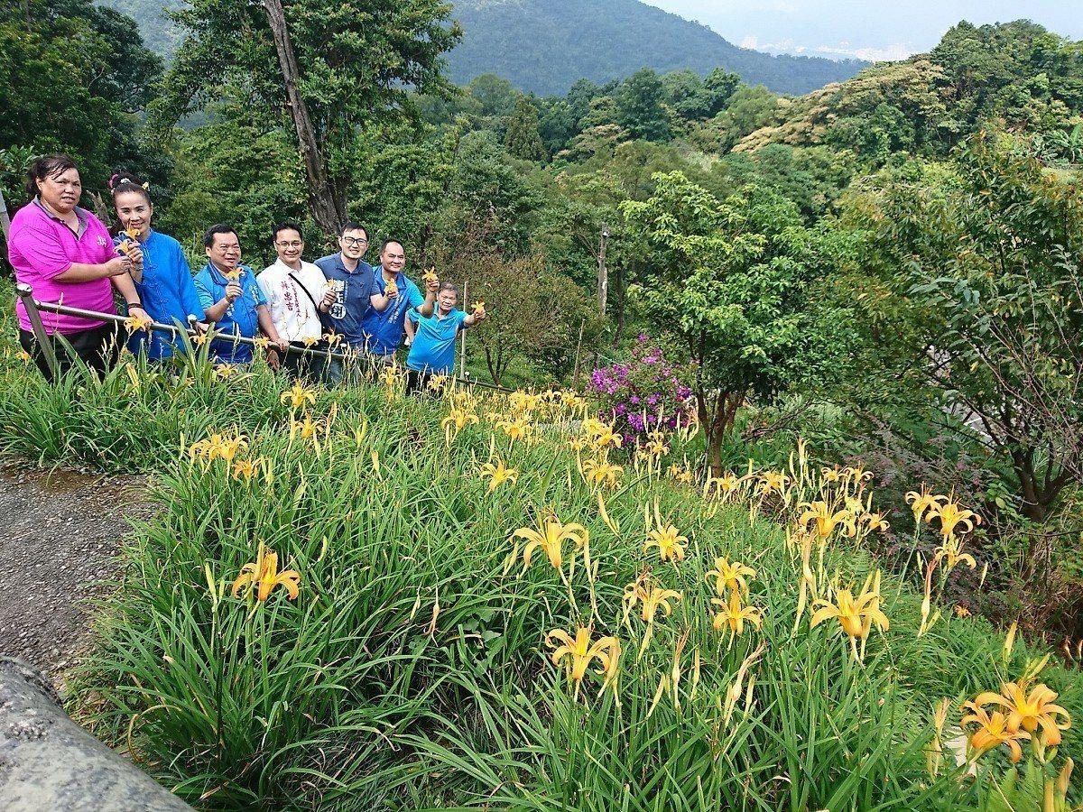 汐止五東山慈聖宮,整個山坡是開滿了金針花真的好美,登高望遠可以看到大海、基隆嶼,...