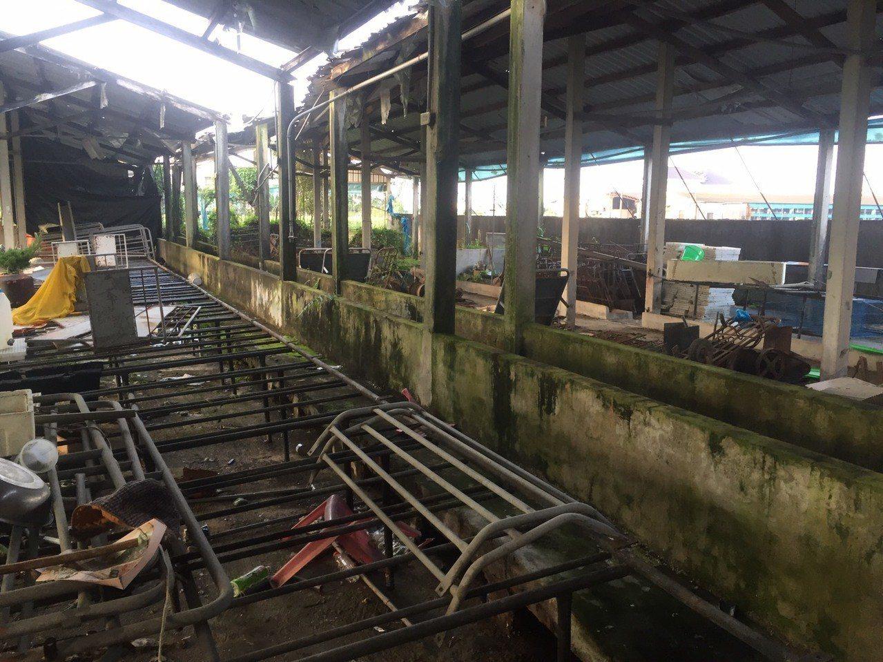 潘姓男子原先躲藏在廢棄豬舍,涉嫌將毒品藏放在豬舍鴿籠。記者劉星君/翻攝