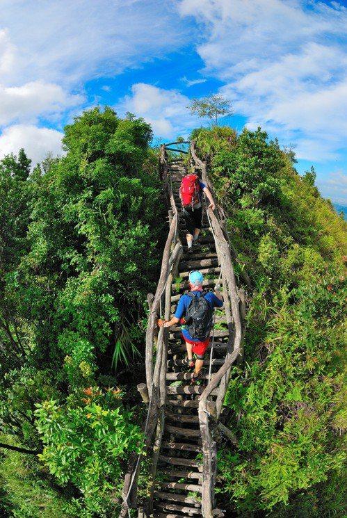 大坑五號登山步道走在稜線上,是絕佳的賞景地點。圖/台中市風景管理所提供