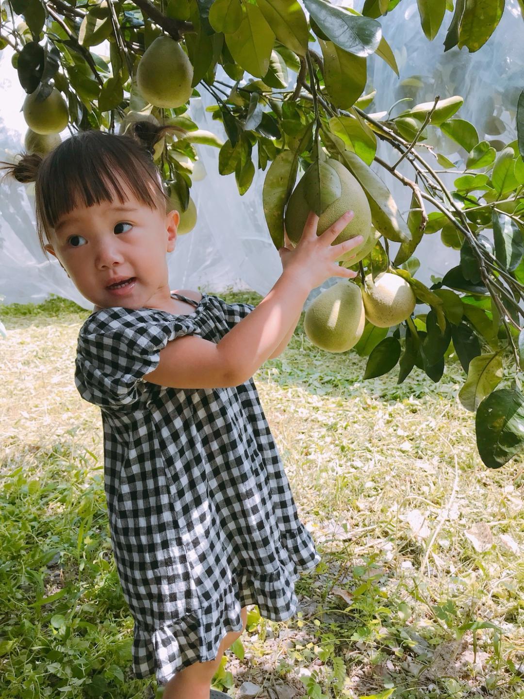 秋遊宜蘭冬山鄉可以選擇到各休閒農業區,感受農遊樂趣。圖/冬山鄉農會提供