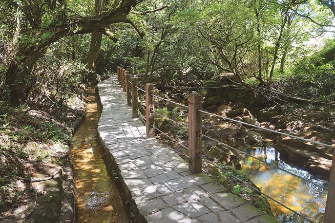 水車寮歩道はその昔、蓬莱米を運ぶための重要なルートとなっていました。