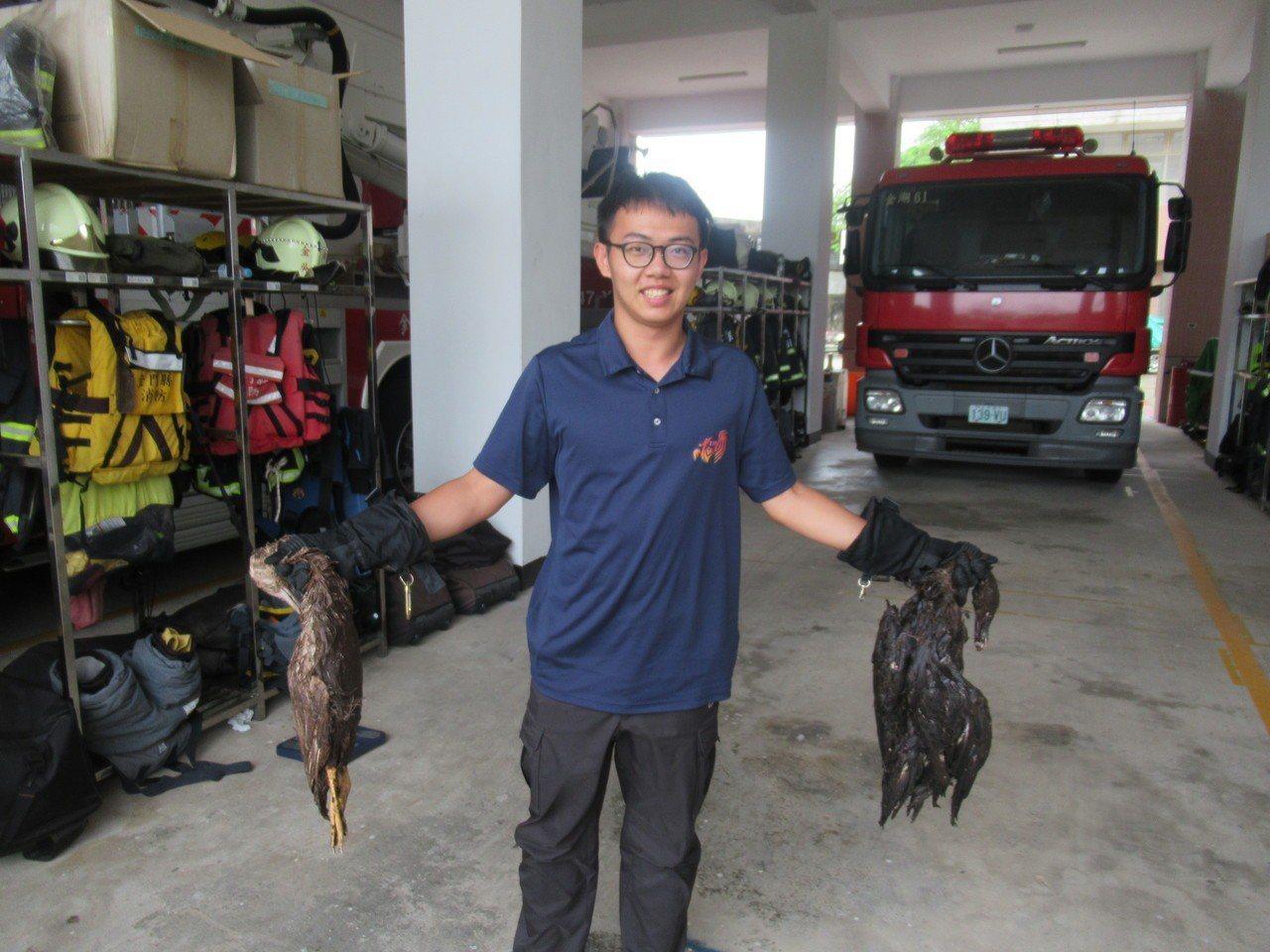 這隻蟒蛇吞下的鴨子兩隻共6kg。 圖/金門縣消防局提供