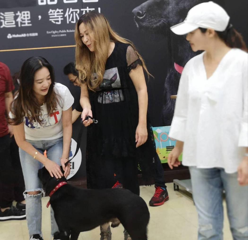 應曉薇(左起)、張富美、黃雅珉出席狗狗節活動。圖/倪有純提供