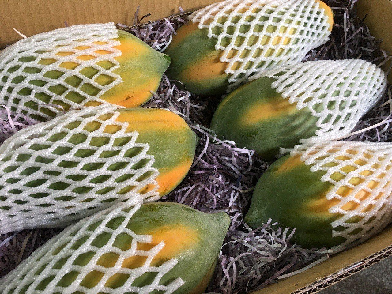 雲林縣林內鄉盛產木瓜,秋天正是木瓜最好吃的時節,鄉農會舉辦木瓜節及評鑑全力行銷。...
