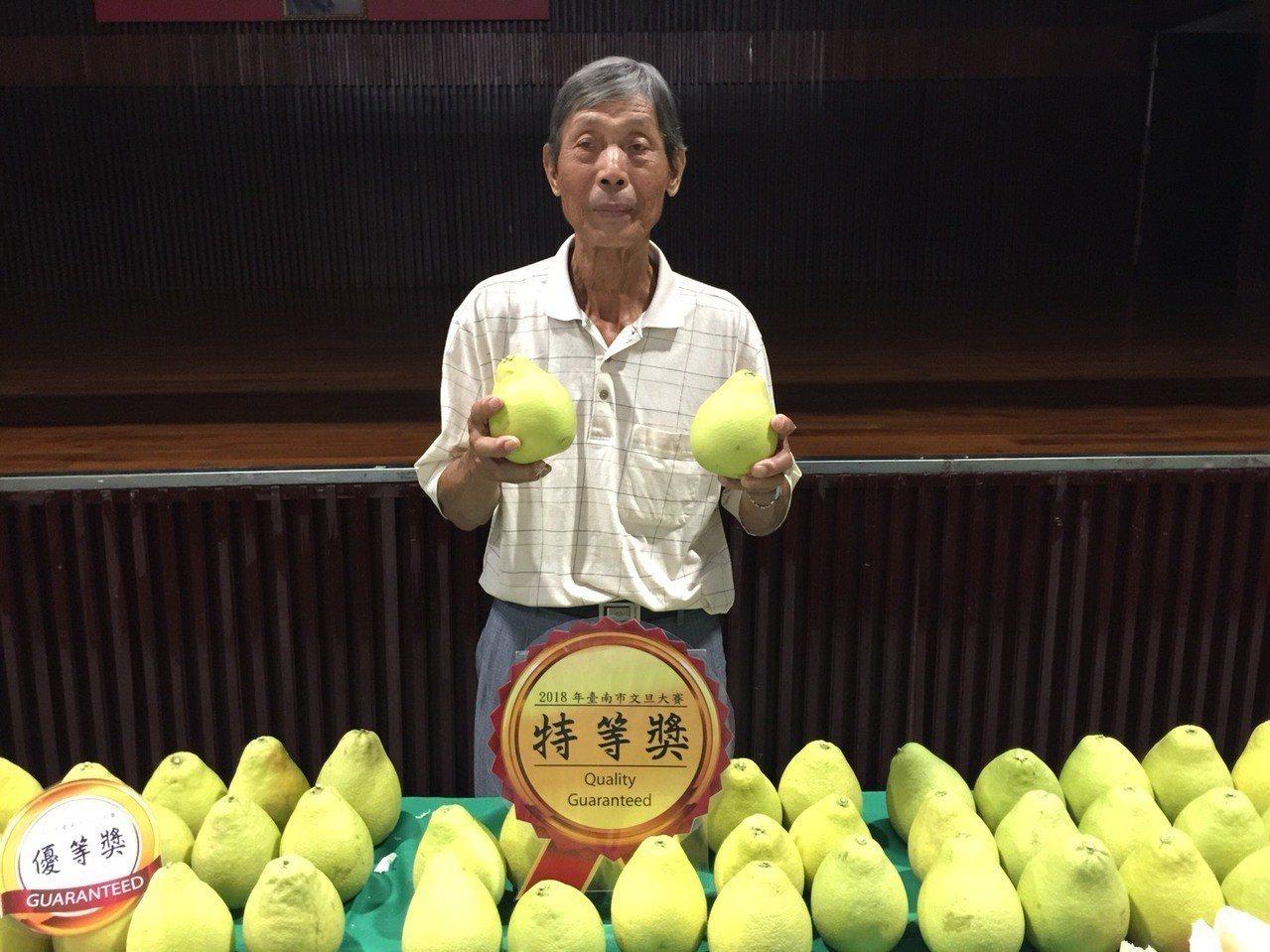 台南市文旦王陳清田, 甜度13.2度,他說, 都按老師教的種。記者吳政修/攝影