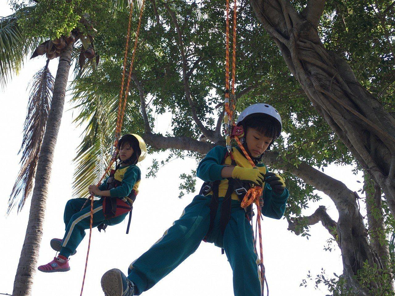 學童在公辦公營的實驗小學壽山國小,參加探索教育攀樹課程。圖/壽山國小提供