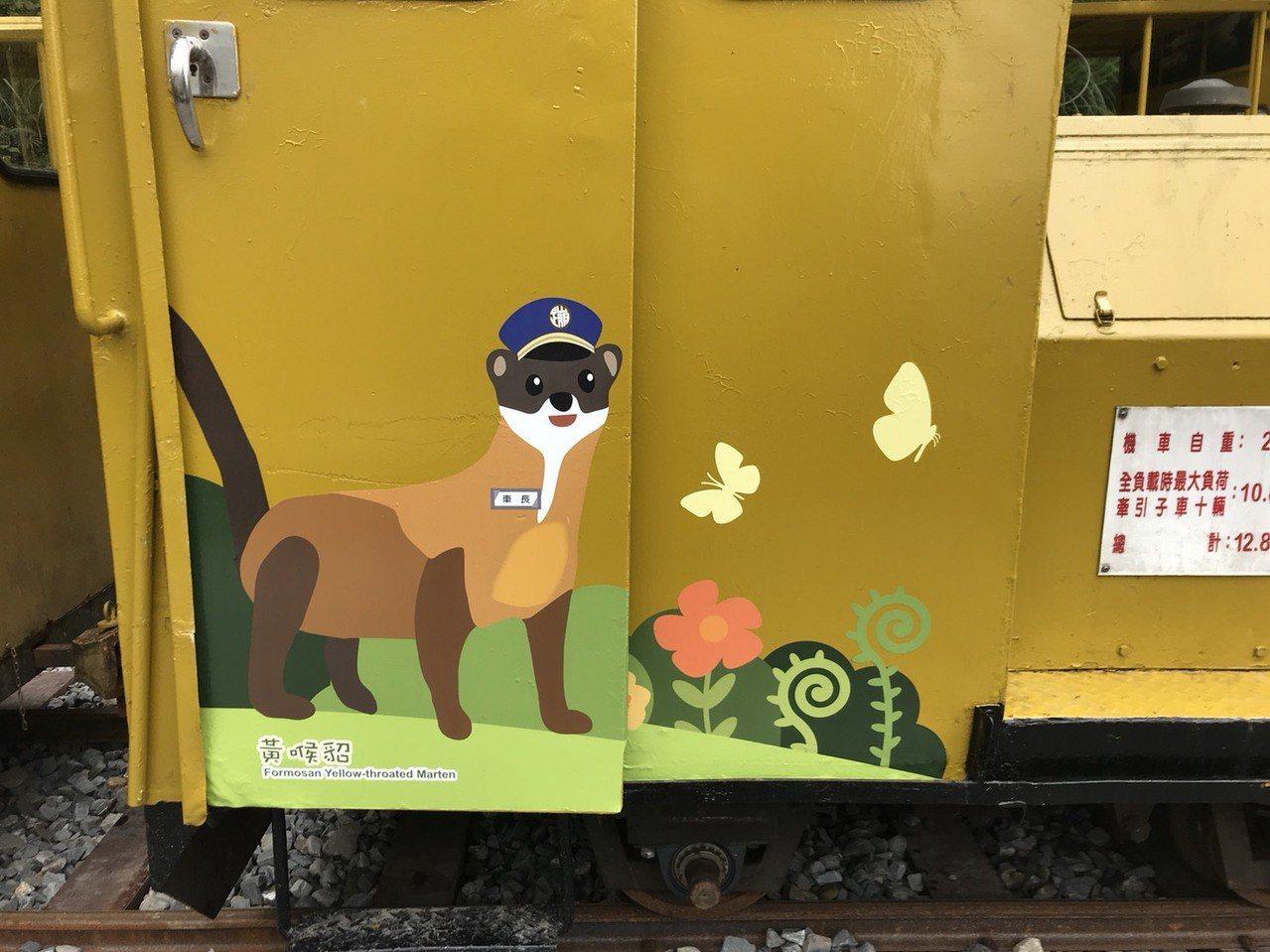 太平山蹦蹦車本月19日復駛,4列列車的車頭添新妝,分別彩繪黃喉貂、藍腹鷴、金翼白...