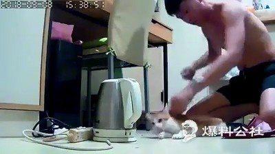 蔡姓男子涉虐貓致死。圖/翻攝自臉書爆料公社