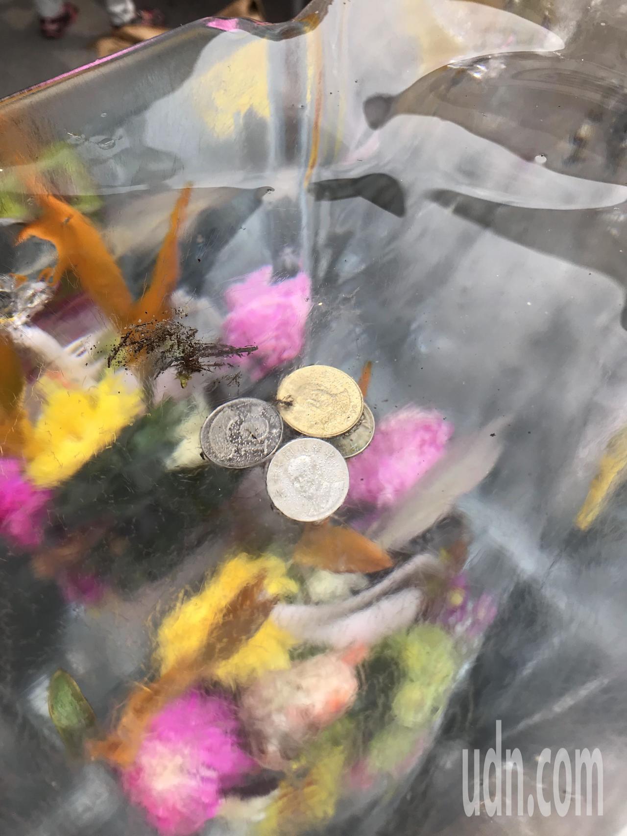 東港鎮長致贈的「冰花」被人發現冰著3個10元跟一個50元硬幣。記者蔣繼平╱攝影
