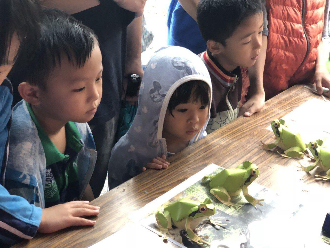 結合立式划槳又可以賞蛙,只有在新竹才玩得到。圖/新竹市府教育處提供