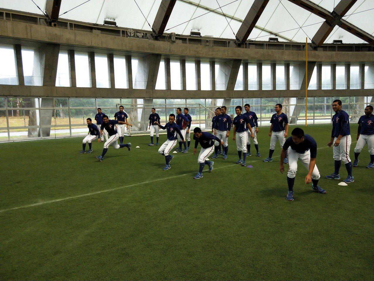 中華隊今天進行熱身練習。記者婁靖平/攝影