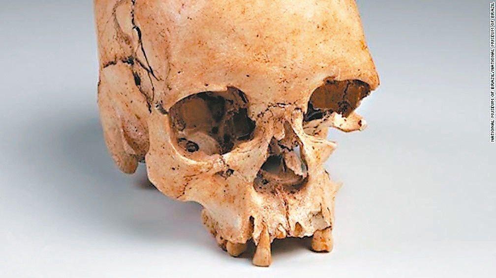 巴西境內出土的最古老人類化石「露西亞」。 里約國家博物館官網