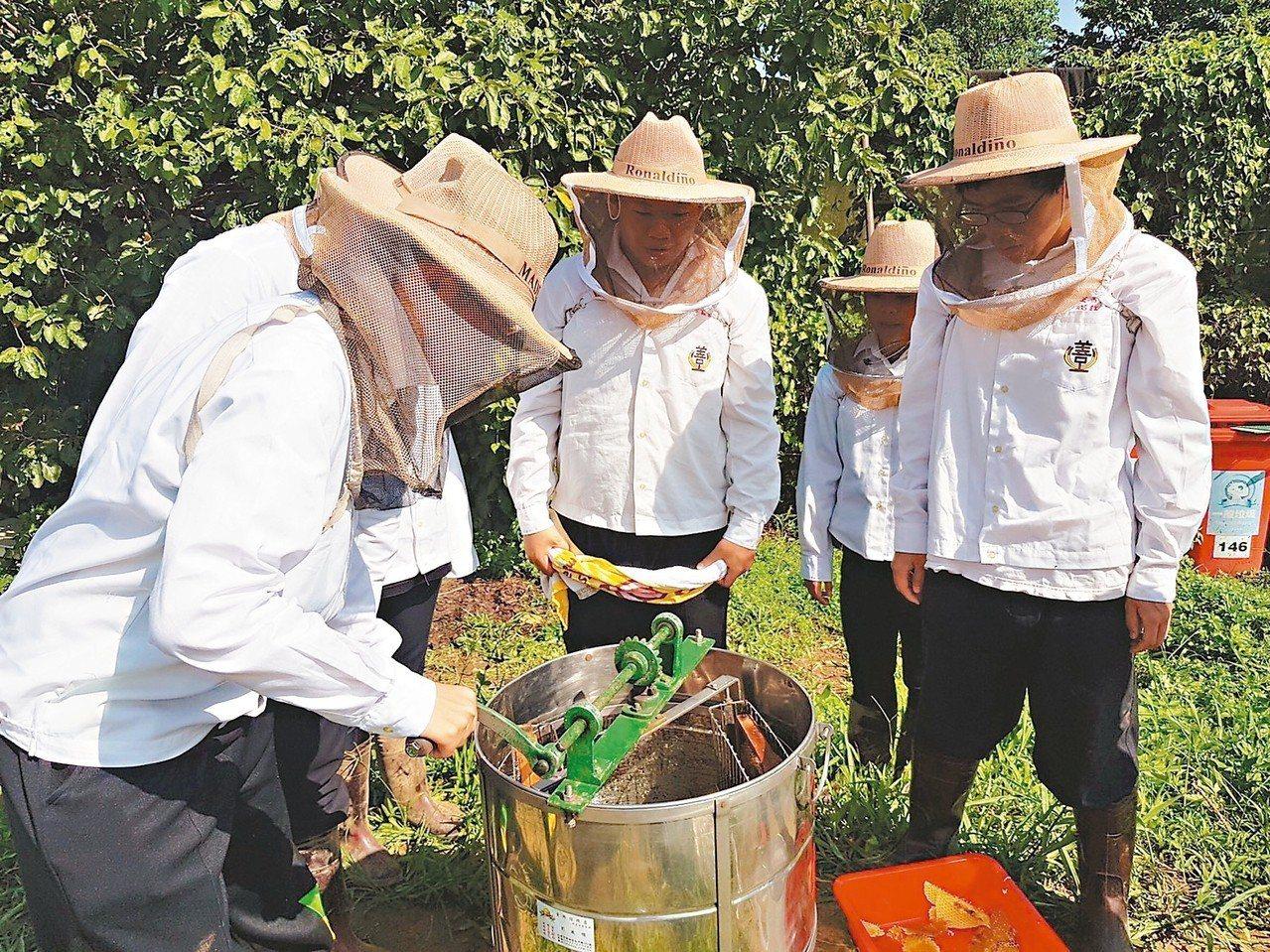 至善高中學生在大溪養蜂農場學習如何取得蜂蜜和包裝。 圖/桃園市至善高中提供