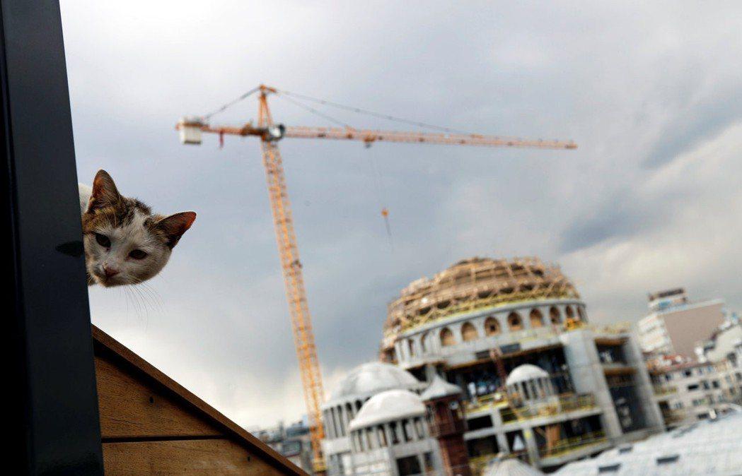 厄多安政府多年來藉著鼓勵公私營部門舉債,以毫不節制的寬鬆財政和貨幣政策,建造「大...