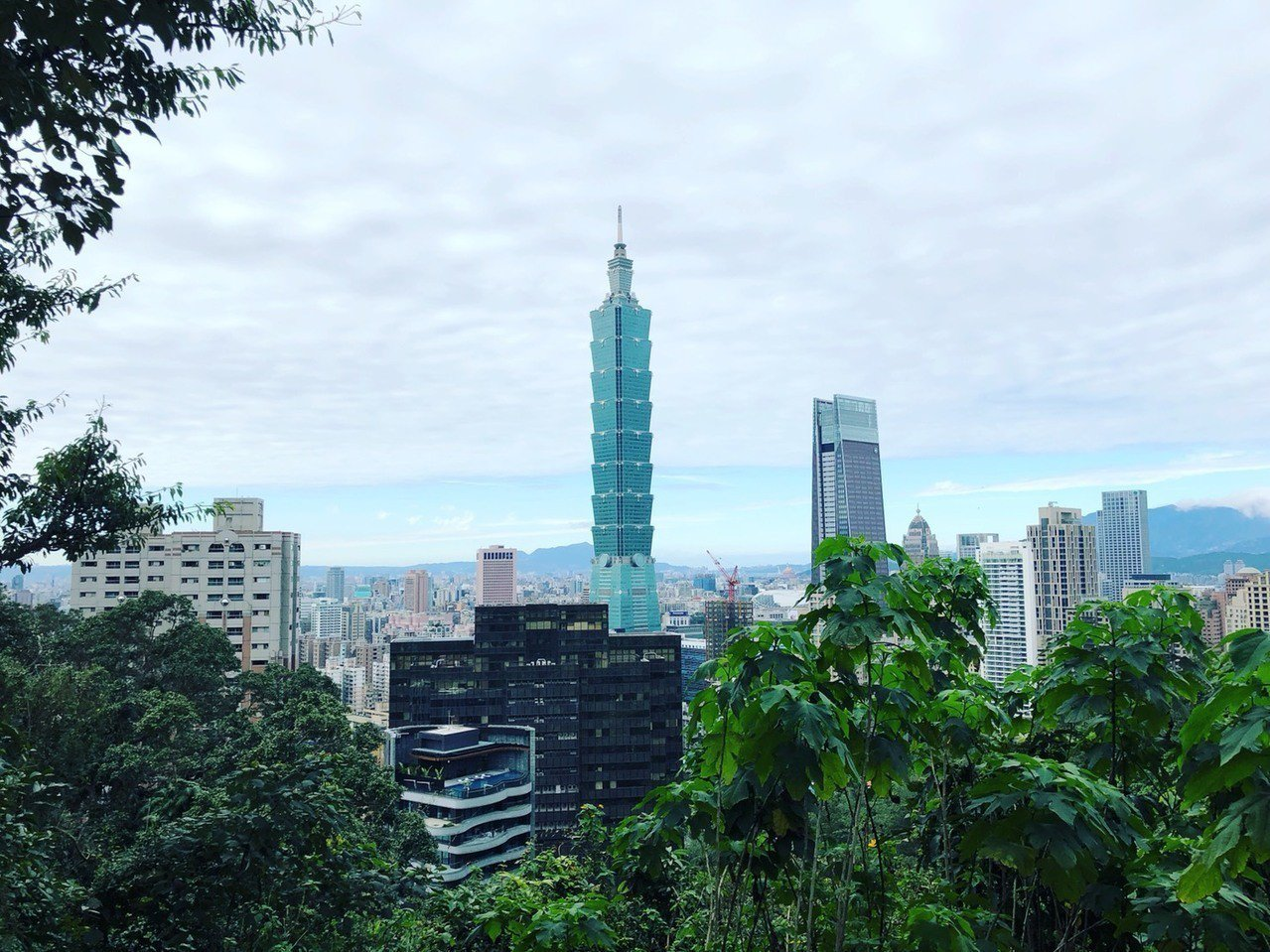 台北著名地標台北101大樓。記者邱瓊玉 /攝影