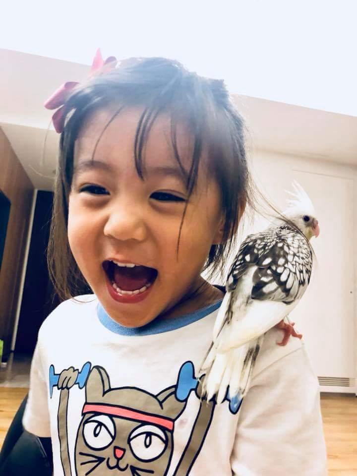 賈靜雯分享咘咘養鳥日記。圖/摘自臉書