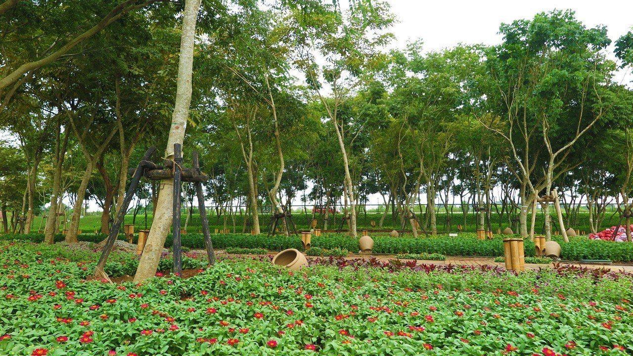 台中花博外埔園區無患子花道已陸續完成草花種植。 圖/台中市政府提供