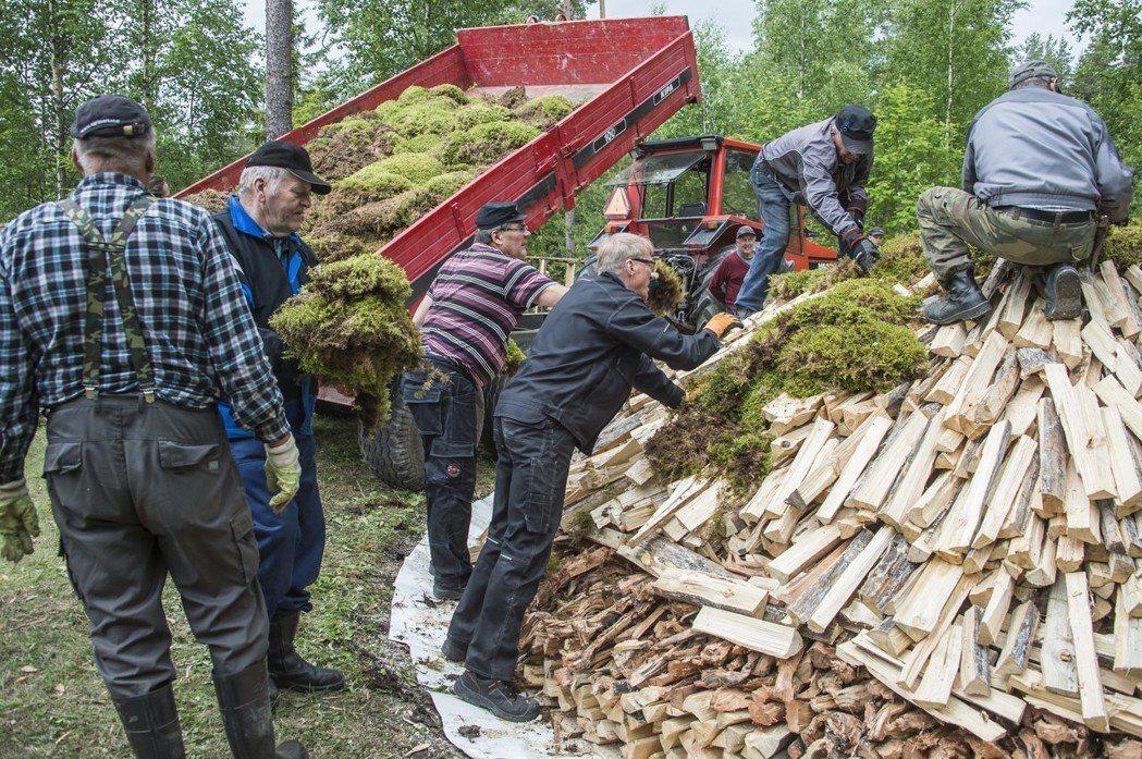 大量松樹被砍伐下來製造焦油,圖為焦油製作過程。 圖/歐新社