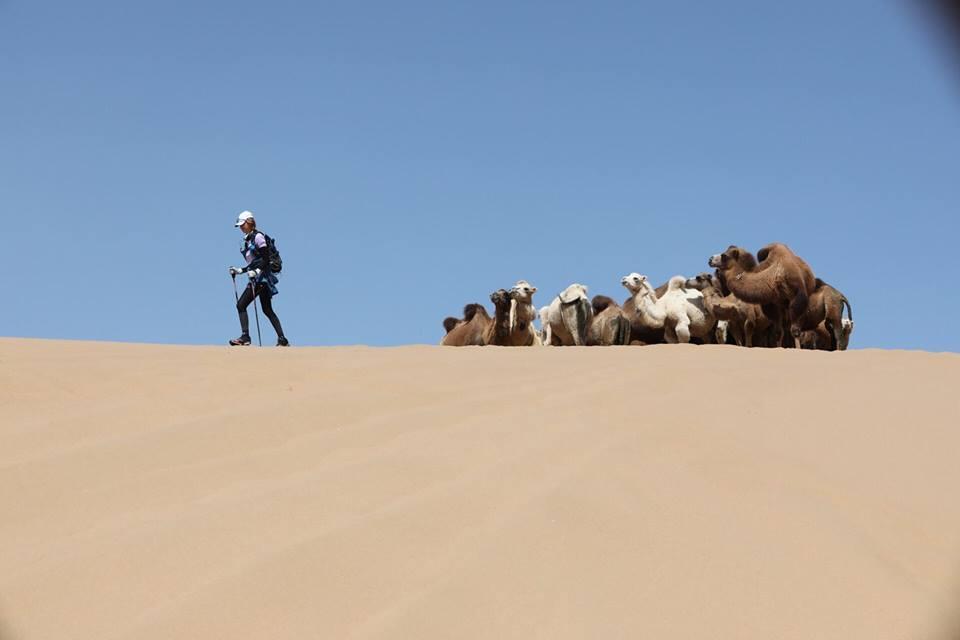 王心恬在沙漠中碰到駱駝。圖/王心恬提供