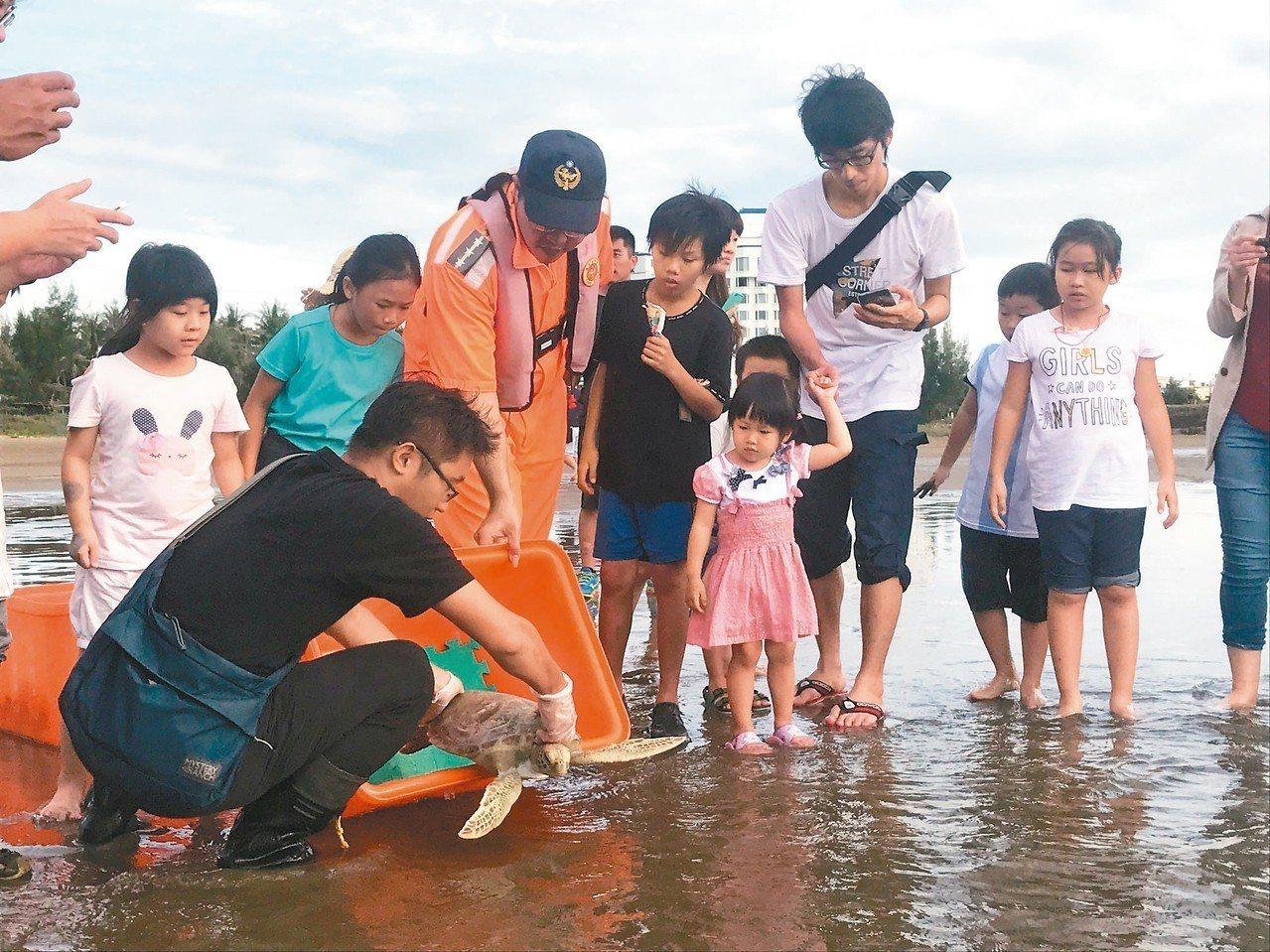 國立海洋生物博物館與海巡人員,共同在車城鄉野放照護近半年的4隻海龜。 圖/海生館...