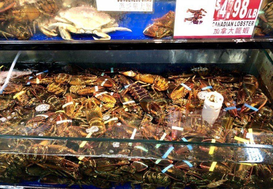 法拉盛的華人超市打出龍蝦每磅4.99美元的低價。(記者朱蕾/攝影)