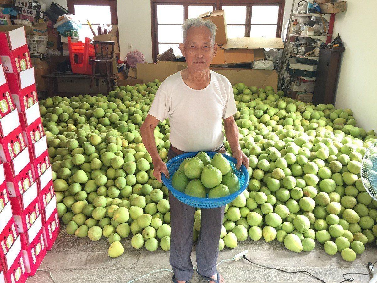八十多歲果農王錦土,從小就務農長大,種出來的文旦皮薄,甜度高,今年參加比賽,相當...
