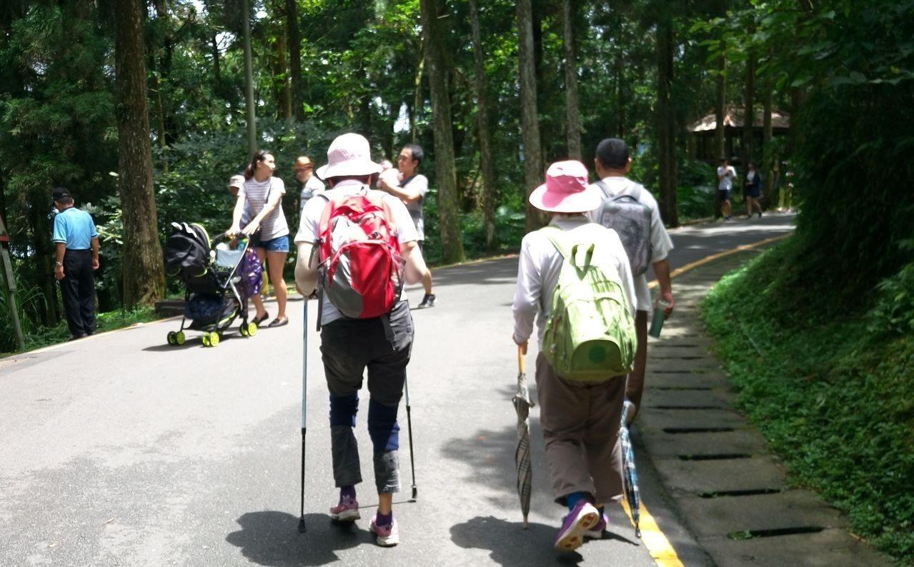 中醫師李艾玲建議,老年人白天可多安排散步、園藝、踏青等,定量運動與適量日曬,別賴...