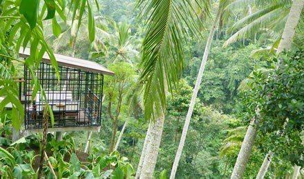 虹夕諾雅峇里島位於風光秀麗、綠草如茵的烏布,可俯瞰帕克裡桑河。圖/翻攝自星野集團...