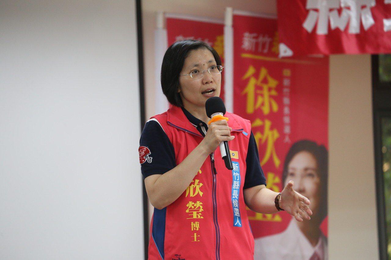 徐欣瑩今天再推競選影片。圖/徐欣瑩團隊提供