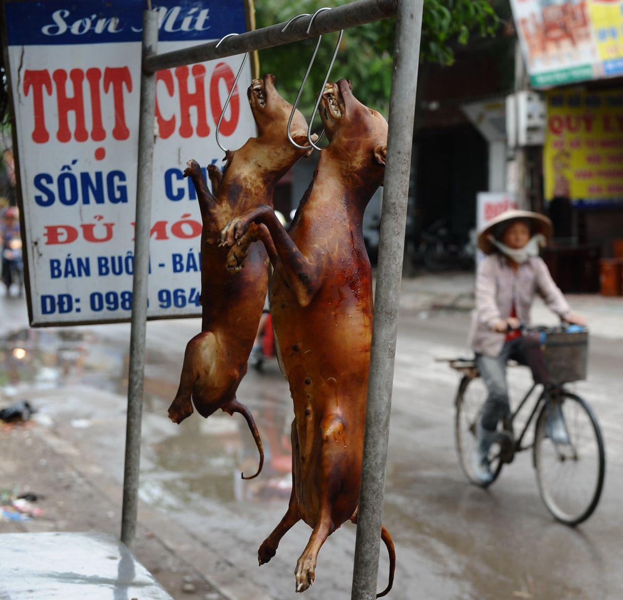 狗肉攤大剌剌將宰殺後的整隻狗肉掛著販售。(法新社)