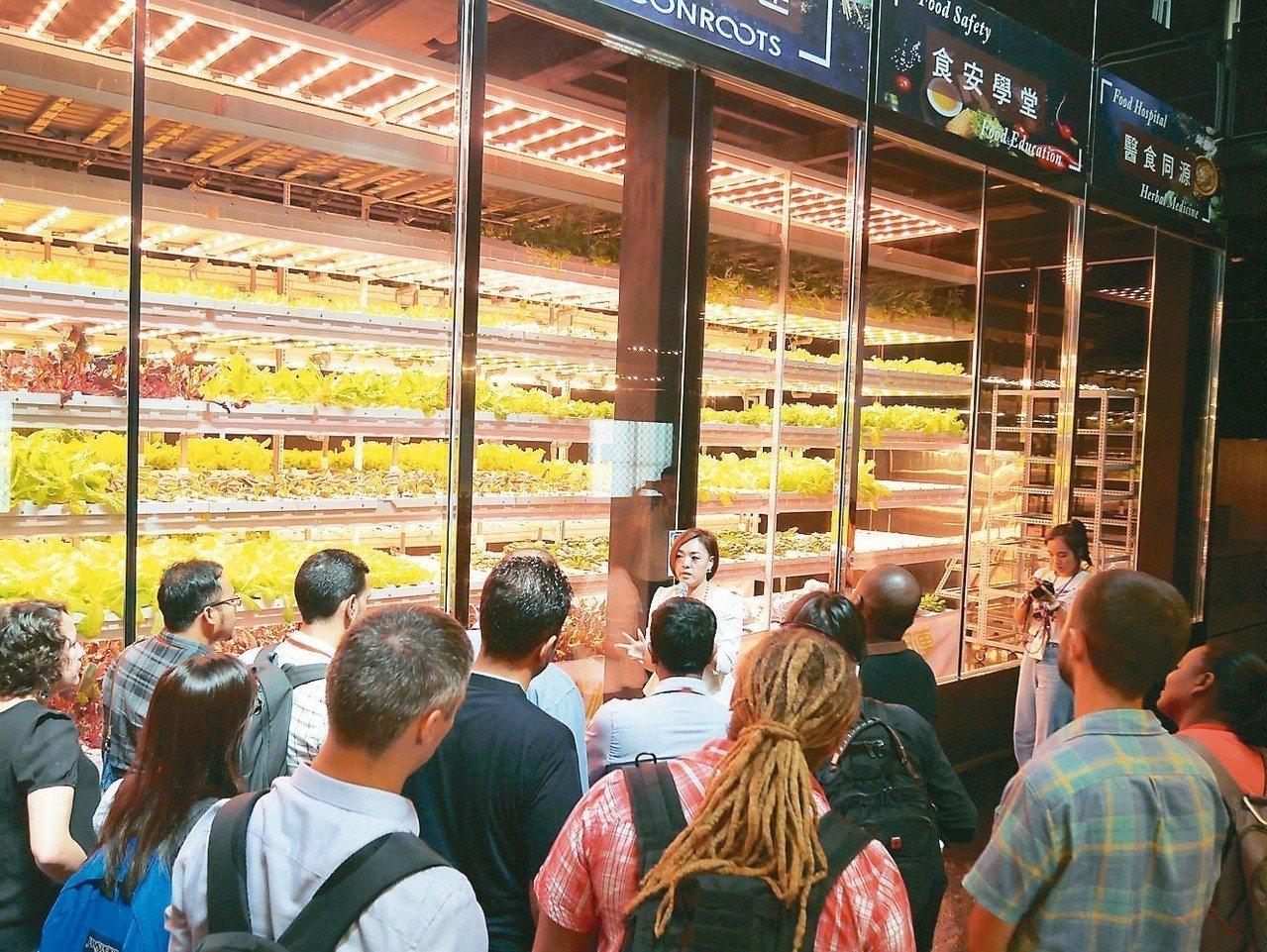 太極光擁有LED混光封裝技術,應用於農產品作物栽培。 櫃買中心╱提供