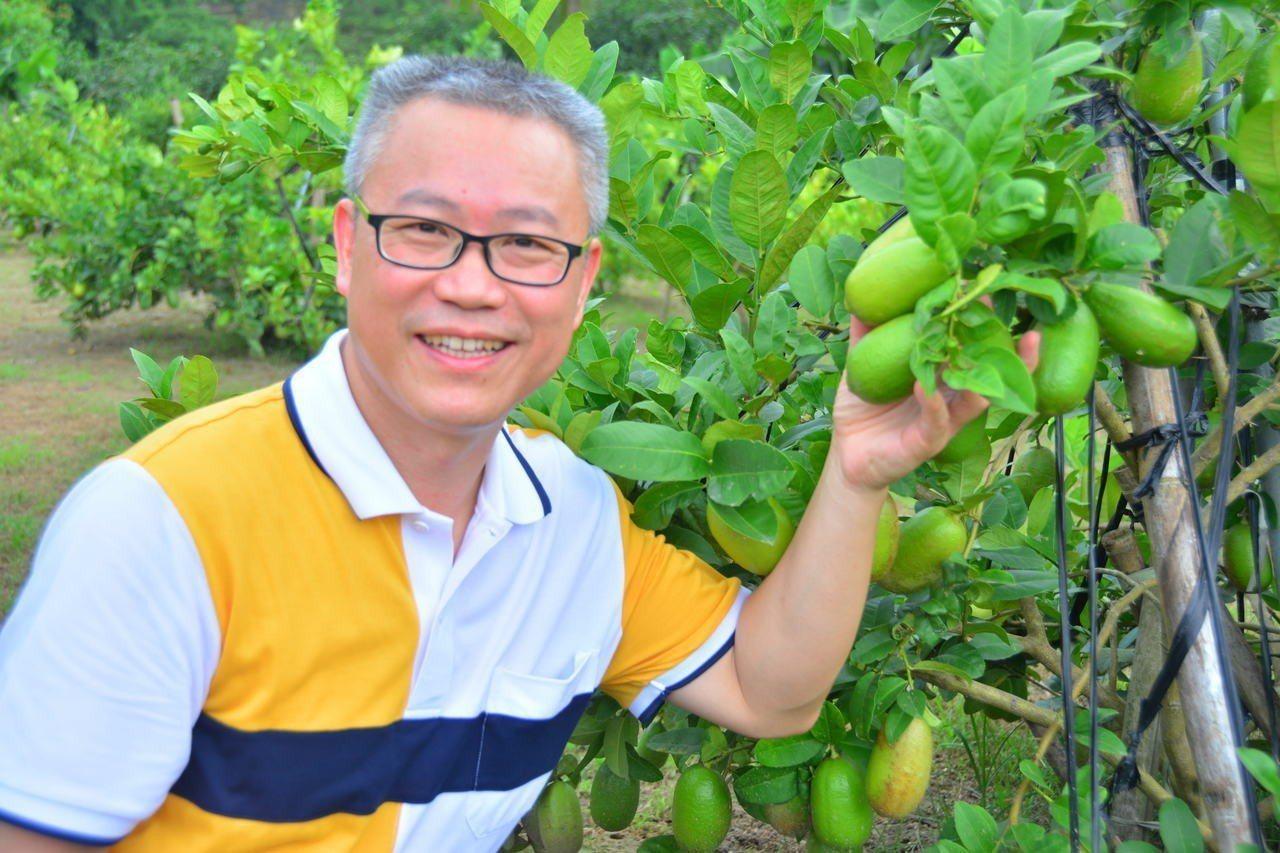 原是電腦公司老闆的江明賢,因妻子罹癌去世,決定返鄉回到台南楠西種植無毒香水檸檬。...
