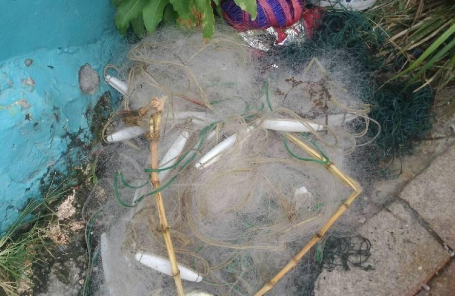 林姓潛水員等人於8日在潮境保育區發現流刺網纏住珊瑚、魚類。圖/基隆市政府提供