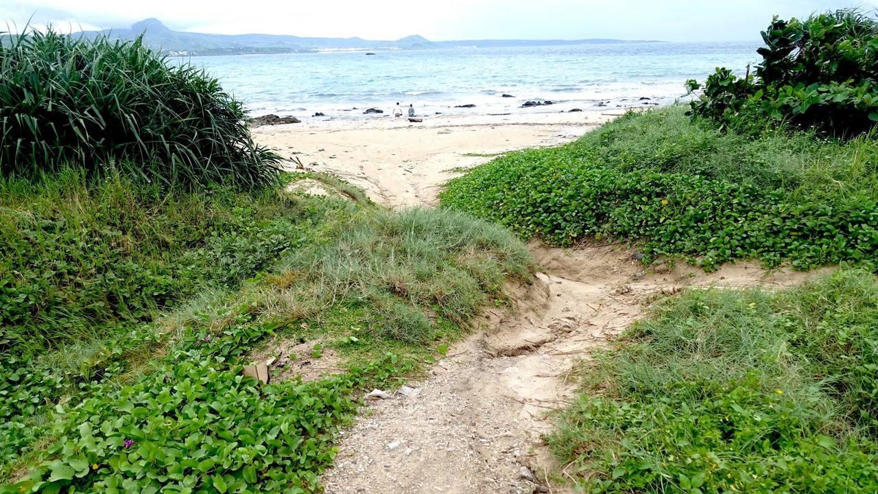 墾丁後壁湖海域珊瑚被黃泥沙覆蓋,潛友認為是連日大雨將山坡衝下來的泥沙帶進淺海。圖...