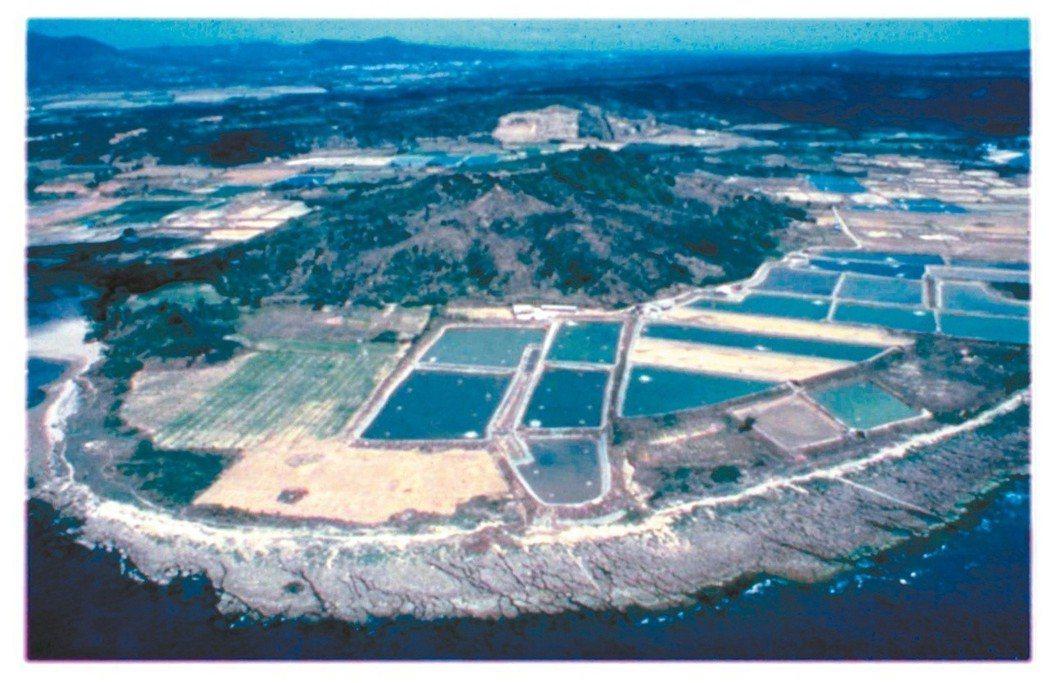 圖一:建館前海生館基地上的違法魚塭。(圖/海生館提供)
