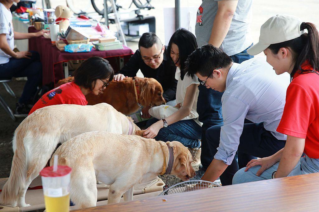 多年致力動物相關公益活動的Subaru,今年再邀請惠光導盲犬教育基金會一同參與品牌盛會。 圖/Subaru提供