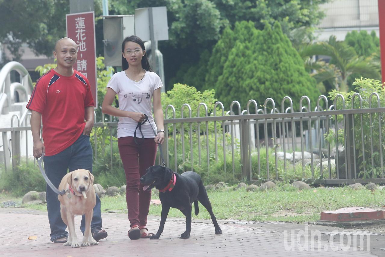 財務部關務署長謝鈴媛表示,為使除役犬能回歸家庭生活,關務署除役犬將依序由原領犬員...