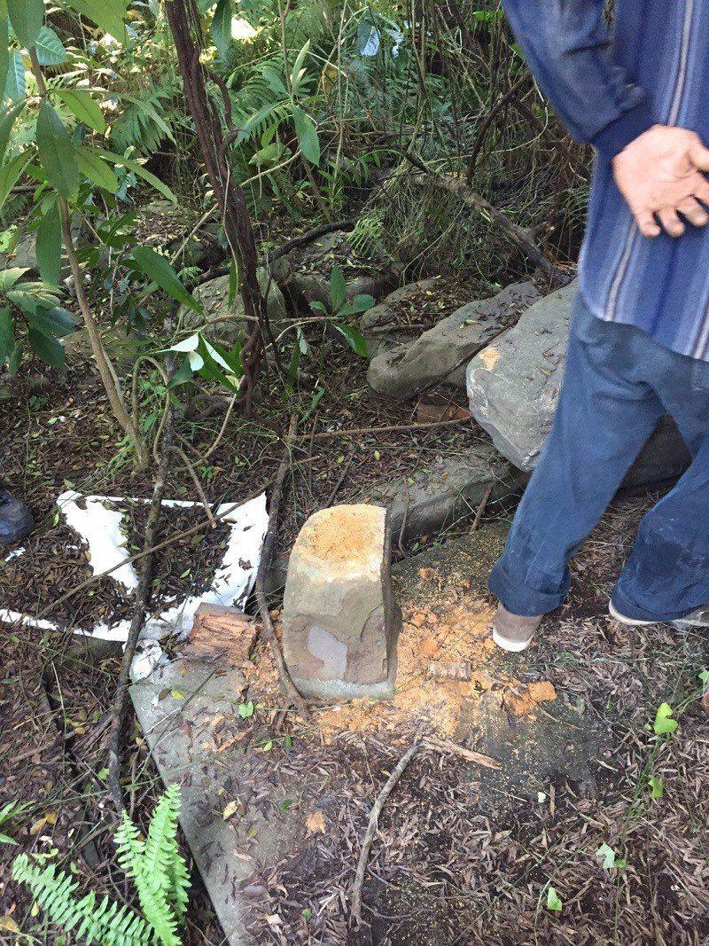 位於屏東市的李淑德舊居月內被偷三次檜木。記者翁禎霞/翻攝