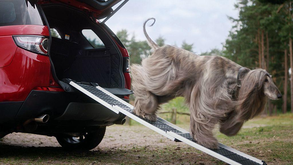 貼心的收納斜坡設計,不僅可保護毛小孩膝蓋,上車時也能減輕飼主負擔,且這個坡道更可承受85kg的重量。 圖/Land Rover提供
