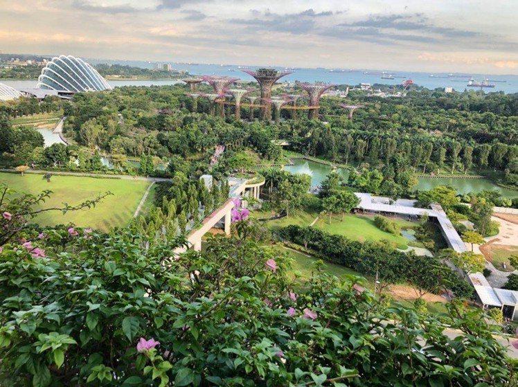 花園城市新加坡,一個人的旅行十分安全。圖/Tripresso旅遊咖提供