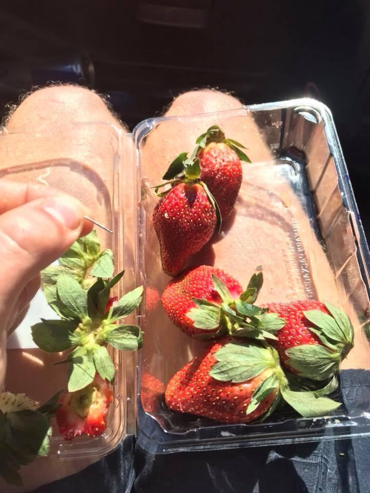 昆士蘭民眾誤食遭插針的草莓,事後腹痛送醫。取自Joshua Gane臉書