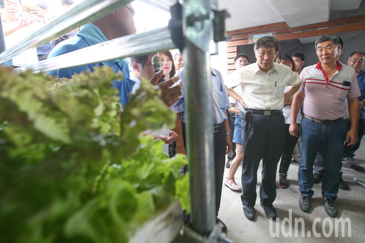 台北市長柯文哲(右二)出席園圃生活節,提倡田園生活化。記者葉信菉/攝影