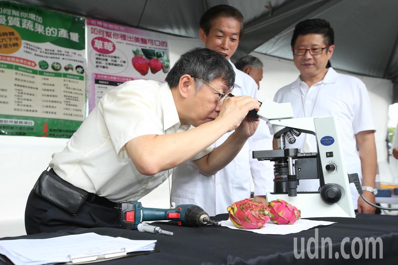 台北市長柯文哲(左)參觀植物醫生攤位。記者葉信菉/攝影